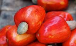 Cashew apple, thy name is Cashew apple.