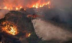 Australia bushfire crisis: 24 killed, over 6 mn hectares of land burned