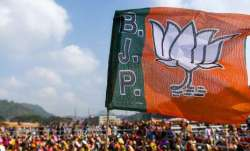 Delhi elections: No CM face for BJP, party promises 5-times cheaper electricity