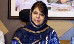 Mehbooba Mufti, Article 370