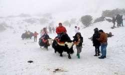sikkim tourist footfall