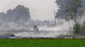 Health Minister Satyendar Jain links COVID-19 deaths in Delhi to pollution by stubble burning