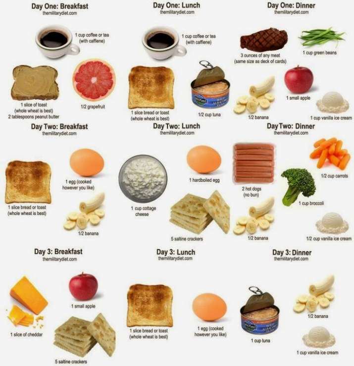what to eat on the military diet